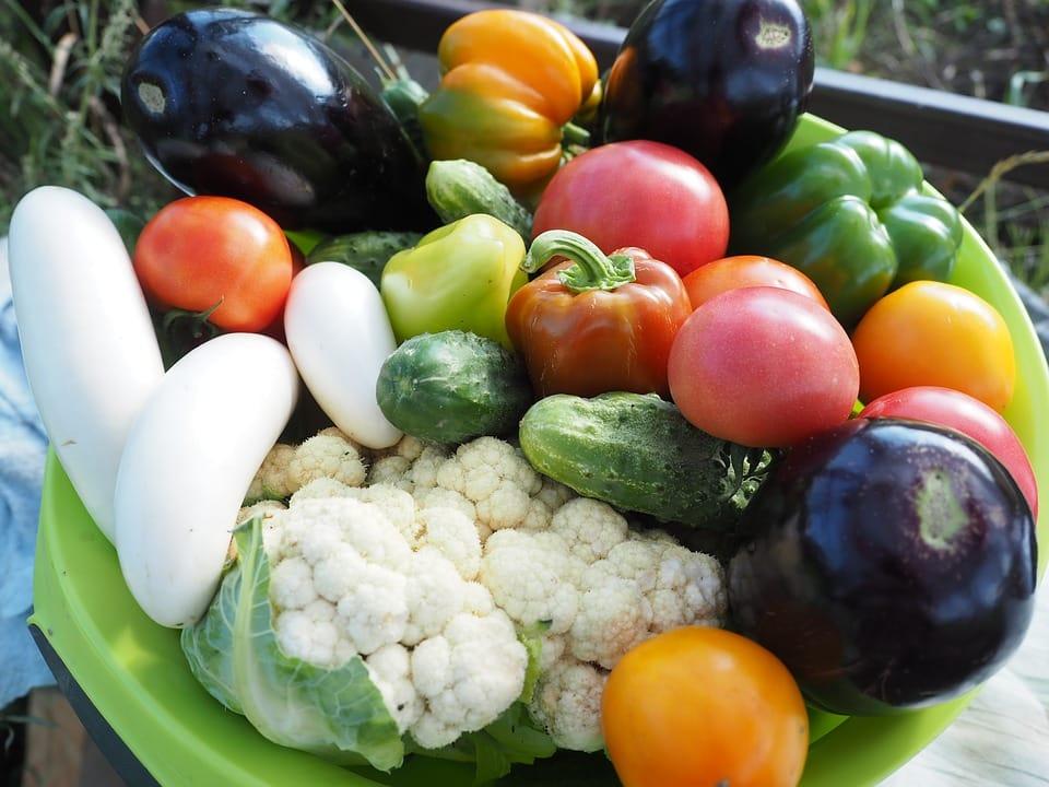 Dieta wegetariańska - wady i zalety
