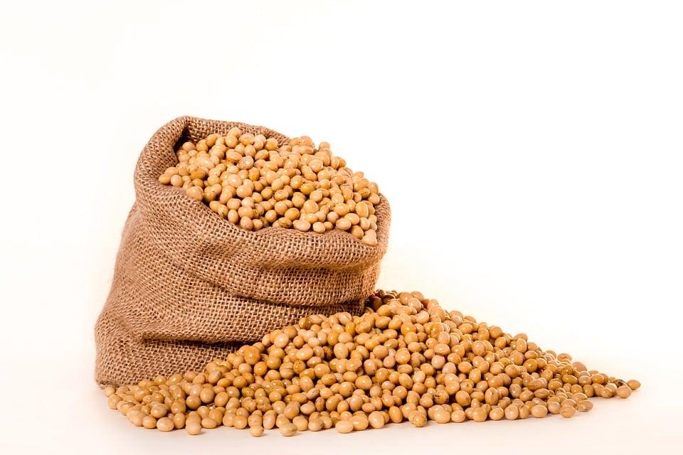 Jakie jest dzienne zapotrzebowanie na białko pochodzenia roślinnego?