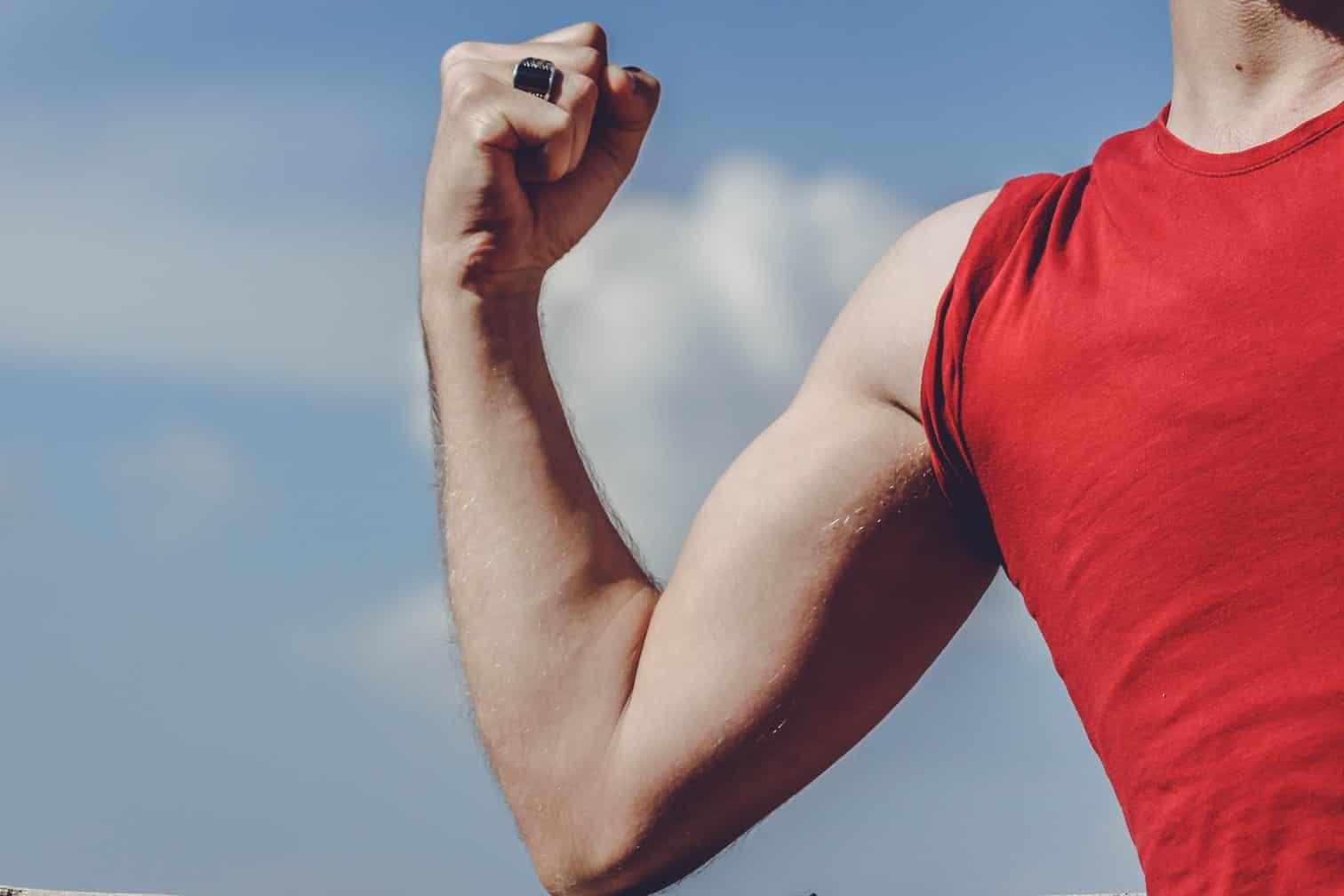 Czy budowanie masy mięśniowej ma sens bez spożywania białka zwierzęcego?