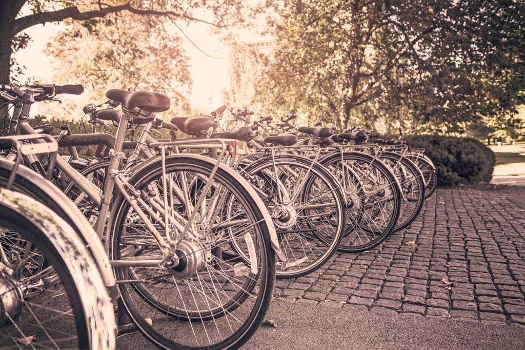 Ścieżki rowerowe w Warszawie dla aktywnych